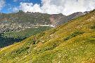 Tundra Communities Trail