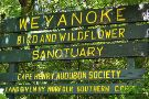 Weyanoke Bird and Wildflower Sanctuary