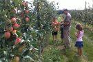 Whitter Fruit Farm