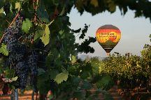A Grape Escape Balloon Adventure