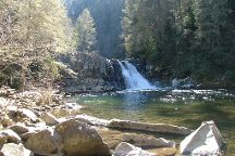 Abrams Falls Trail, Great Smoky Mountains National Park, United States