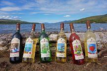 Adirondack Winery, Lake George, United States