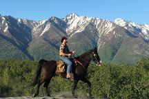 Alaska Horse Adventures, Palmer, United States