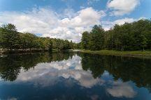 Allegany State Park, Salamanca, United States