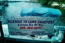 Allergic To Land Charters
