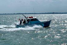 Amick's Deep Sea Fishing
