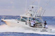 Angler Management Sportfishing
