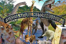 Bandera Natural History Museum, Bandera, United States