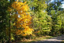 Bernheim Arboretum & Forest, Clermont, United States