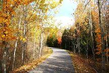 Betsie Valley Trail, Frankfort, United States