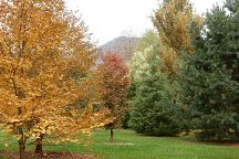 Birdsong Pleasure Garden, Luray, United States