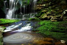 Blackwater Falls State Park, Davis, United States
