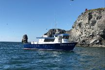 Bob's Trophy Charters - Day Trips