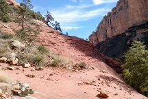 Boynton Canyon Trail, Sedona, United States