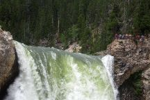 Brink of the Lower Falls Trail, Yellowstone National Park, United States