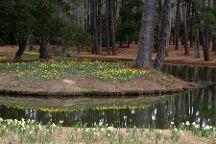 Brookgreen Gardens, Murrells Inlet, United States