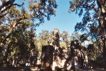 Bulow Plantation Ruins Historic State Park, Flagler Beach, United States