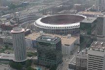 Busch Stadium, Saint Louis, United States