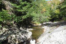 Buttermilk Falls, Ludlow, United States