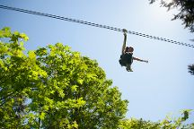 Canopy Tours Northwest, Camano Island, United States