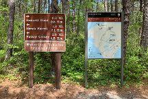 Cape Cod Provincelands Trail, Provincetown, United States
