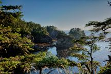 Cape Flattery Trail, Neah Bay, United States
