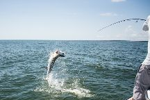 Carolina Guide Service Fishing Charters