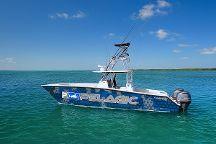 Catchalottafish Charters