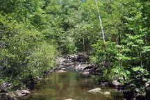 Cedar Falls Trail, Morrilton, United States