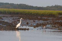 Charleston Inshore Fishing Charters Grey Ghost