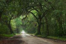 Charleston Photography Tours