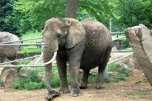 Cleveland Metroparks Zoo, Cleveland, United States