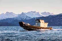 Coldwater Alaska