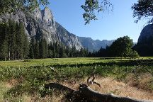 Cooks Meadow Loop, Yosemite National Park, United States