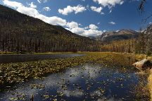 Cub Lake Trail, Rocky Mountain National Park, United States