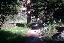 Cub Lake Trail, Rocky Mountain National Park, United States