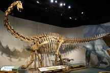 Denver Museum of Nature & Science, Denver, United States