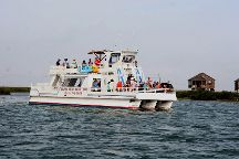 Dolphin Watch Nature Tour on the Mustang II Port Aransas