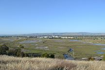 Don Edwards San Francisco Bay Wildlife Refuge, San Francisco, United States