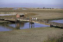 Don Edwards San Francisco National Wildlife Refuge, Fremont, United States