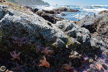 Enderts Beach, Redwood National Park, United States