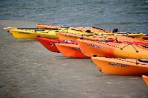 Flipper Finders Boat & Sea Kayak Tour Co.