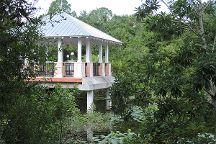 Florida Botanical Gardens, Largo, United States