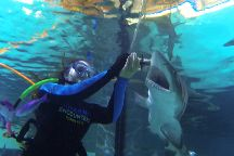 Florida Keys Aquarium Encounters, Marathon, United States