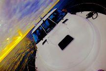 FoxC Cruises