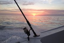 Go Time Sportfishing Charters