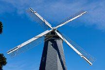 Golden Gate Park Windmills & Tulips, San Francisco, United States