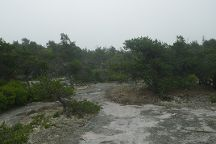 Great Wass Island Preserve, Beals, United States
