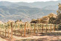Grizzly Peak Winery, Ashland, United States