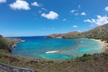 Hanauma Bay Private Dive Tours